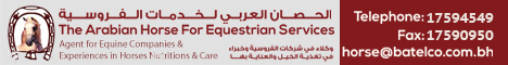 Bahrain Equine Service