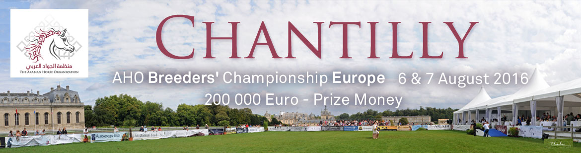 AHO - Breeders' Championship Europe