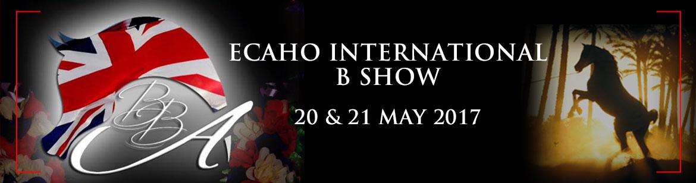 British Breeders Alliance - International B show