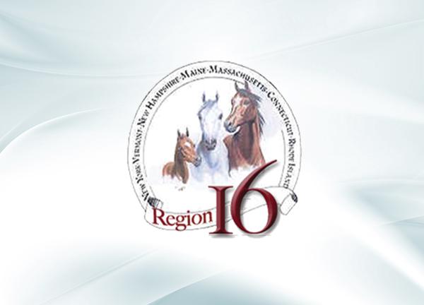 Region 16 - Championship