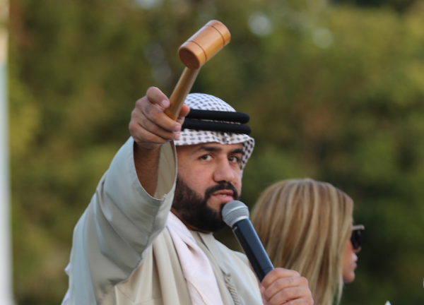 Abu Dhabi - Arabian Show Horse Auction