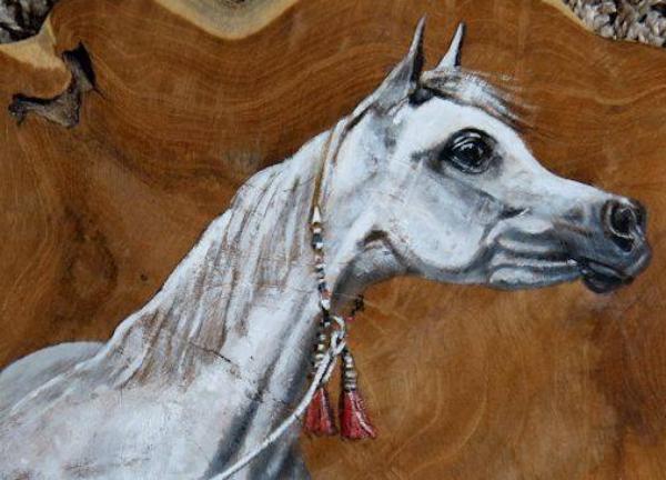 Arabian Horse Weekend - International C Show