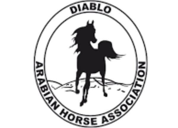 DAHA Spring Horse Show